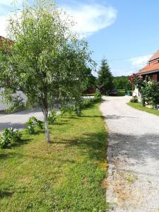 Zahrada ubytování Apartment Dijana