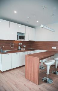 A kitchen or kitchenette at Apartment in Apart-Hotel Yes