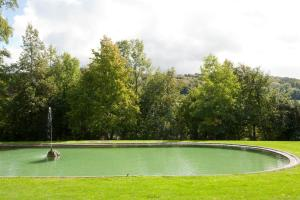 Der Swimmingpool an oder in der Nähe von Schloss Münchenwiler