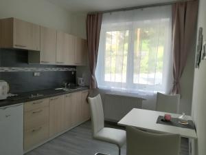 Kuchyň nebo kuchyňský kout v ubytování Apartmán na výsluní