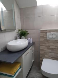 Koupelna v ubytování Apartment Prijeboj