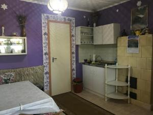 A kitchen or kitchenette at Erzsébet Ház
