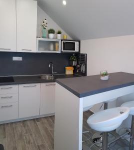 Kuchyň nebo kuchyňský kout v ubytování Apartment Prijeboj