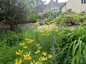 A garden outside Field End House