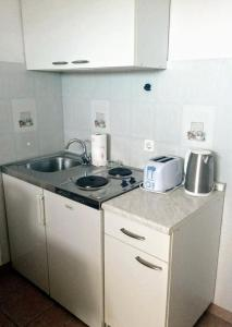 A kitchen or kitchenette at Apartments Anamaria