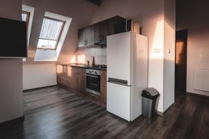 Kuchyň nebo kuchyňský kout v ubytování Vila u Arény