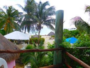Вид на бассейн в Acamaya Reef Cabañas или окрестностях