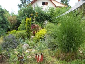 A garden outside Susy Apartman