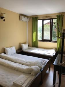 Легло или легла в стая в Complex Trakite