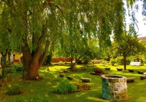 Сад в BinzHotel Landhaus Waechter