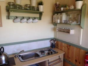 A kitchen or kitchenette at Lizzie Shepherds Hut The Buteland Stop