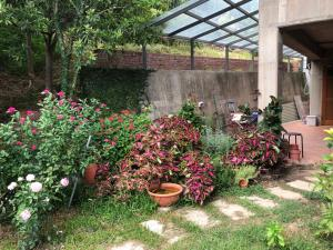 A garden outside Between Trees BnB