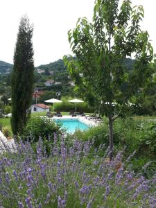 A view of the pool at Guest House Stancija Kovacici or nearby