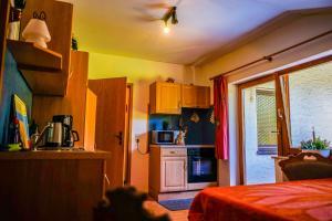 Küche/Küchenzeile in der Unterkunft Gästehaus Riedl