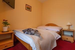 Łóżko lub łóżka w pokoju w obiekcie Willa Świdrówka