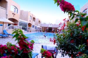 المسبح في منتجع فيرونا أو بالجوار