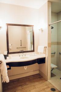 Ванная комната в Hilton Garden Inn Auburn