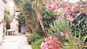 A garden outside Hotel du Parc