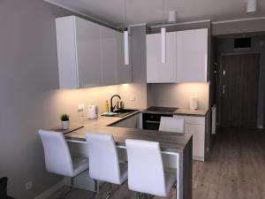 Kuchnia lub aneks kuchenny w obiekcie Apartamenty Leśne Tarasy