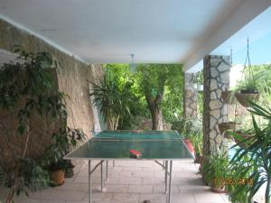 Ping-pong facilities at Attila's House or nearby