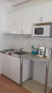 Ett kök eller pentry på Putikon Hovi