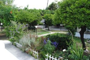 Κήπος έξω από το Karmik Concept Pension