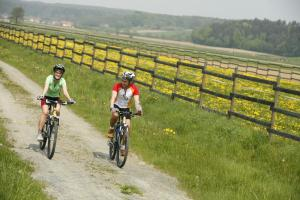 Biking at or in the surroundings of Thermenhotel Stoiser