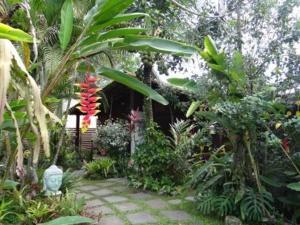 A garden outside Eliconial Paraty Pousada