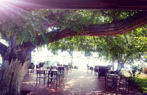 A restaurant or other place to eat at Apartmani Alex Beach