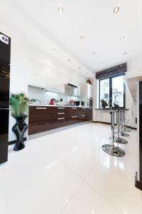 A kitchen or kitchenette at Alex Аpartments