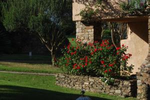 A garden outside Club Hotel Ancora