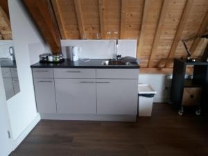 A kitchen or kitchenette at B&B Museumkwartier Schiedam