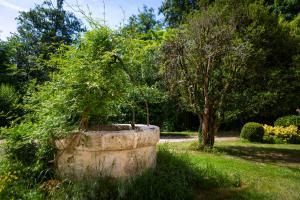 A garden outside Gite la Maison de la Pimpine Lignan de Bordeaux