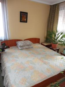 Кровать или кровати в номере Hemus Guest House