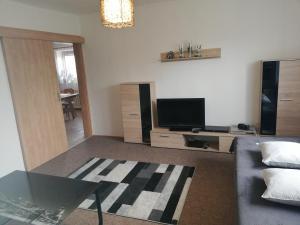 TV a/nebo společenská místnost v ubytování Apartmán Vysočina