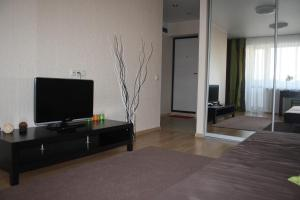 A television and/or entertainment centre at Apartment on Gogolya 11