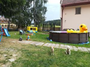 Children's play area at Penzion Tomy Pihlov
