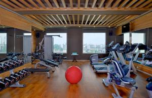 The fitness centre and/or fitness facilities at Radisson Chandigarh Zirakpur