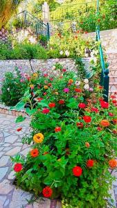 A garden outside Apartment Voula Myrtos