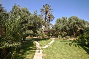 A garden outside Villa Berbère Domaine des Kasbahs