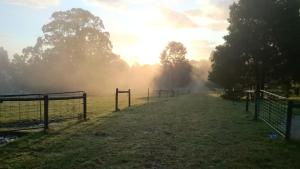 The sunrise or sunset as seen from the farm stay or nearby