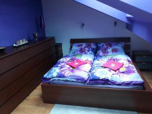 Кровать или кровати в номере Sunny Two-story Apartment Kyje
