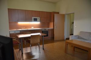 A kitchen or kitchenette at Kolping Campus Krems