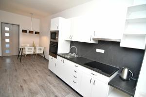 Kuchyň nebo kuchyňský kout v ubytování Apartment Pistany