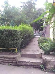 A garden outside V2 hostel house
