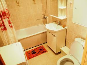 A bathroom at Apartments on Dobrolubova №2