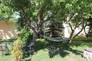 A garden outside Ecoland Hotel
