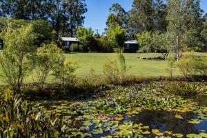 A garden outside Tuckeroo Cottages & Gardens