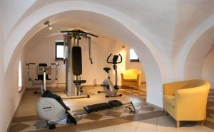 The fitness center and/or fitness facilities at Leźno Palace
