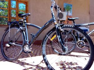 Vélo sur le terrain de l'établissement Bassatine Skoura ou dans les environs